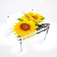 Стол обеденный Квадратный с проходящей полкой Sunflower