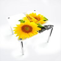 Стол обеденный Квадратный  Sunflower