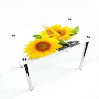 Стол обеденный Прямоугольный Sunflower
