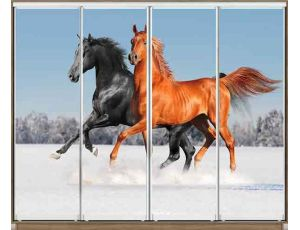 Шкаф купе 4 двери с фотопечатью 280х60х240 см