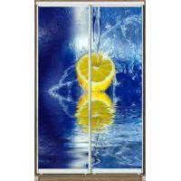 Шкаф купе 2 двери с фотопечатью 120х45х220 см