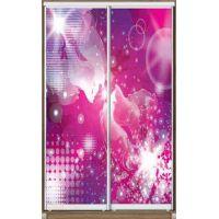 Шкаф купе 2 двери с фотопечатью 110х45х220 см
