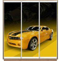 Шкаф купе 3 двери с фотопечатью 210х45х220 см
