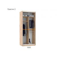 Шкаф купе Практик 2 (100х60х240 см)