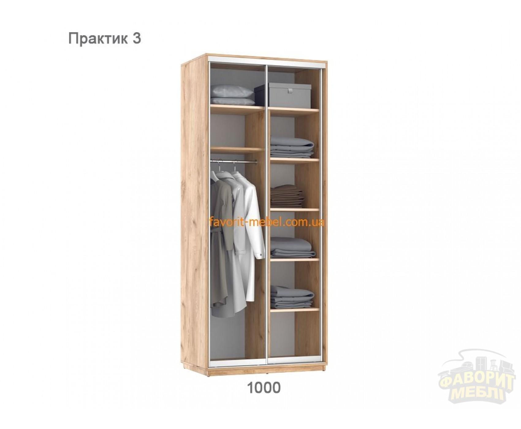 Шкаф купе Практик 3 (100х60х240 см)