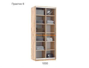 Шкаф купе Практик 6 (100х60х240 см)