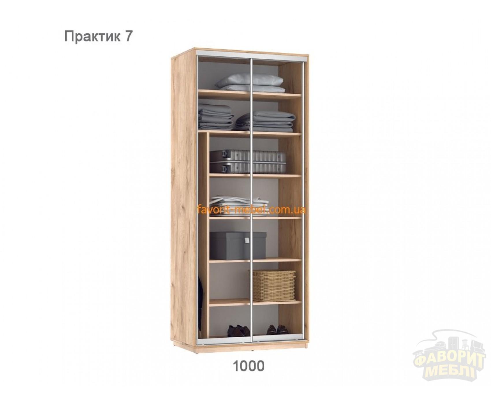 Шкаф купе Практик 7 (100х60х240 см)