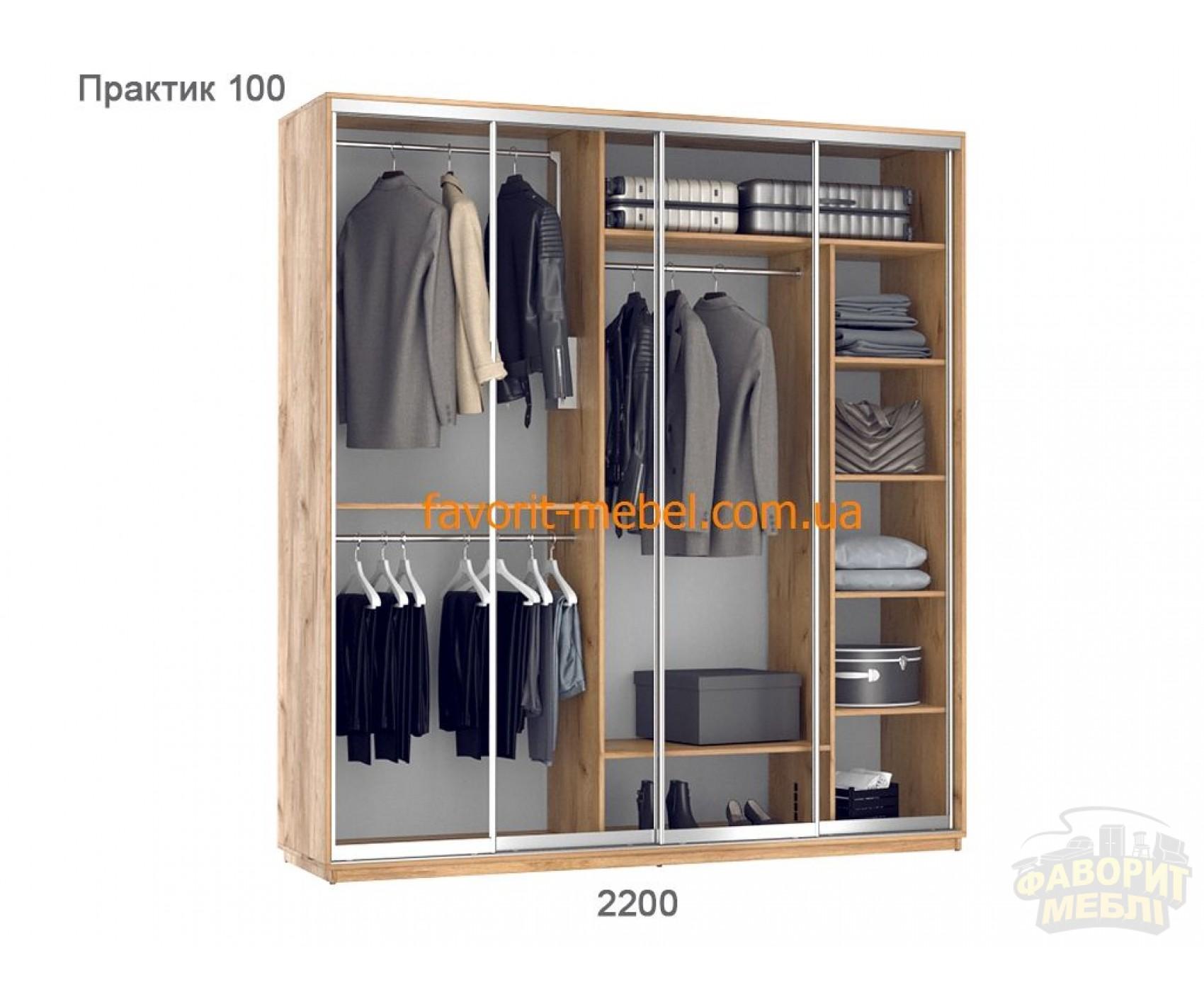 Шкаф купе Практик 100/4 (220х60х240 см)