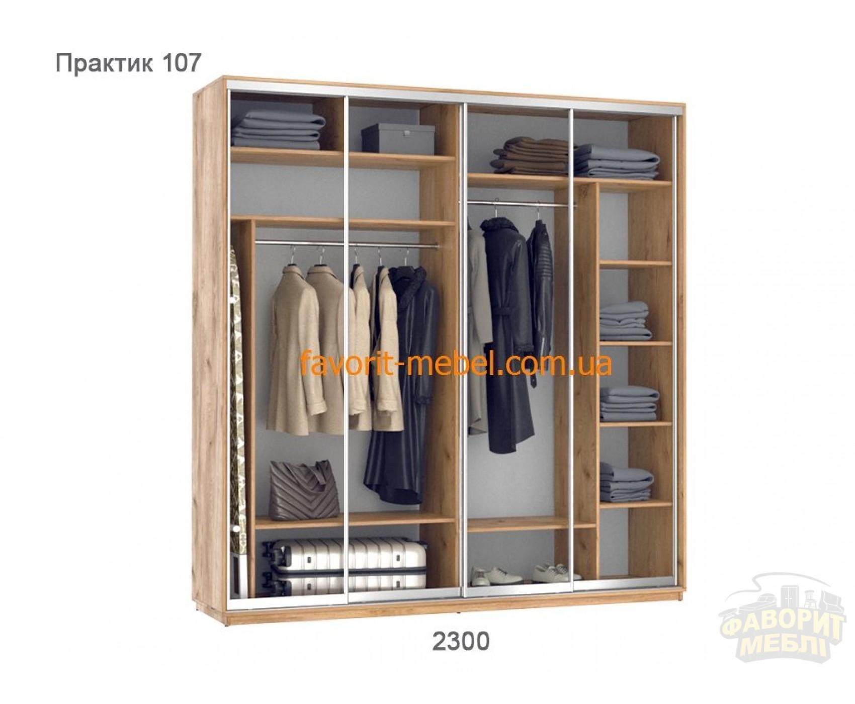 Шкаф купе Практик 107/4 (230х60х240 см)