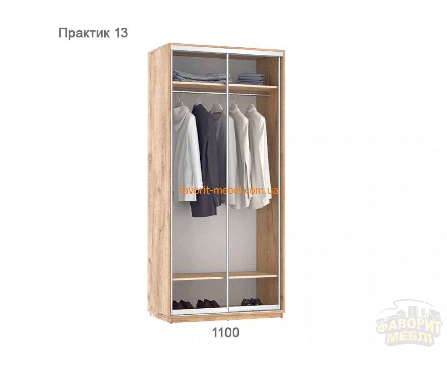Шкаф купе Практик 13 (110х60х240 см)