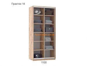 Шкаф купе Практик 14 (110х60х240 см)