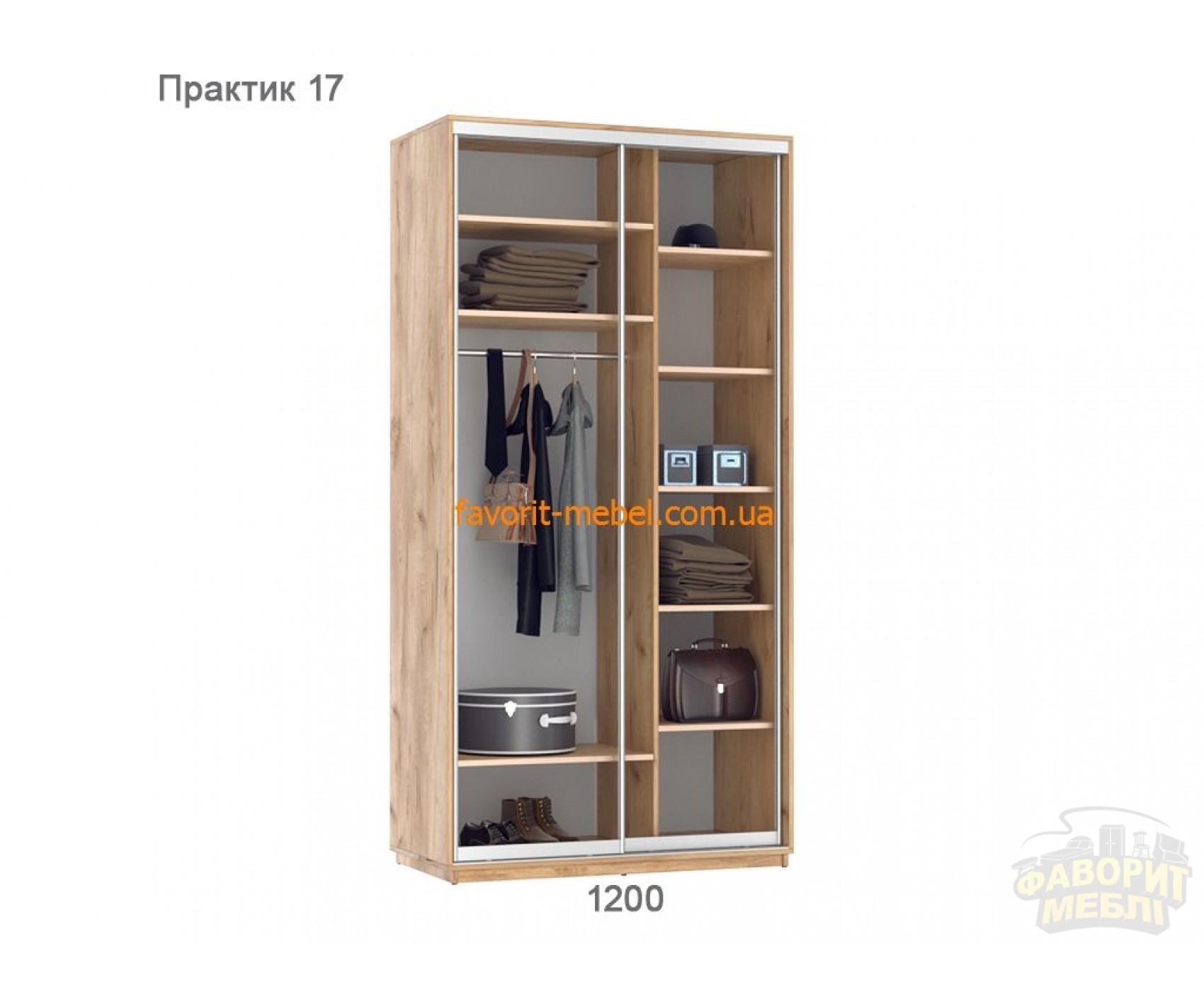 Шкаф купе Практик 17 (120х60х240 см)