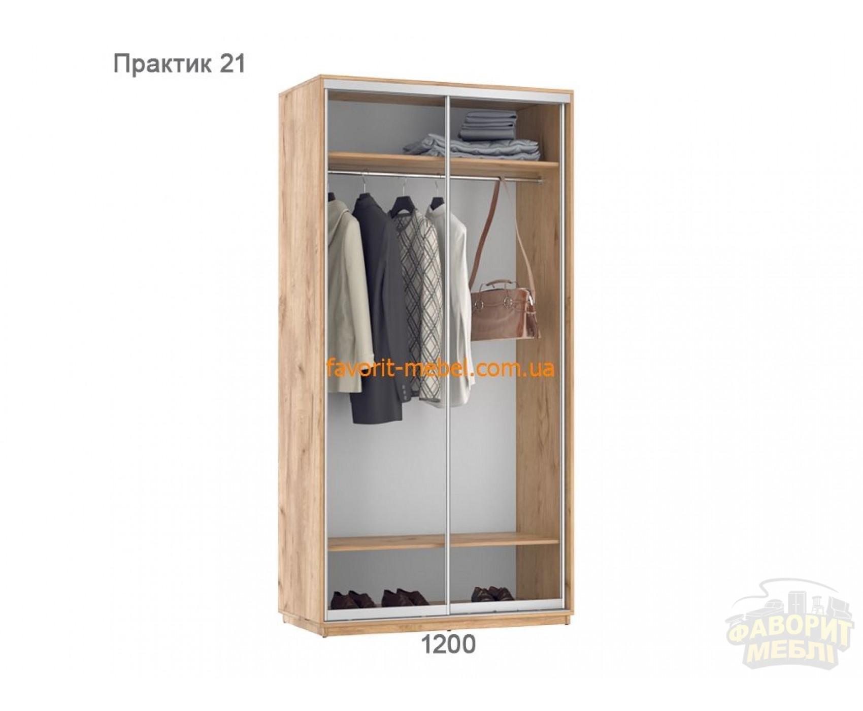 Шкаф купе Практик 21 (120х60х240 см)