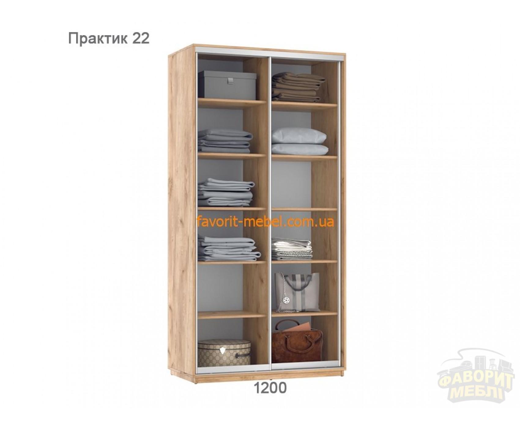 Шкаф купе Практик 22 (120х60х240 см)